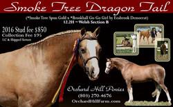 Smoke Tree Dragon Tail Flyer 1