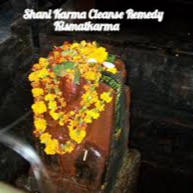 Karma Cleanse Power Remedy