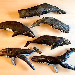 9 Noll-Whales 02-19 I-VI.jpg