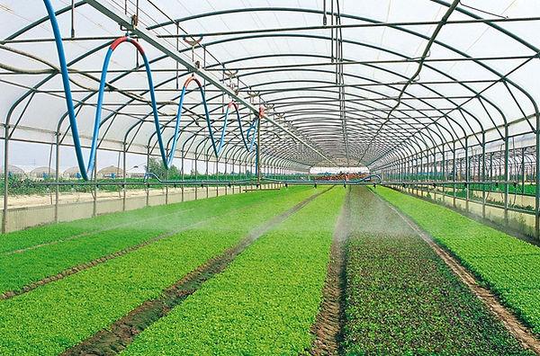 Boom Irrigation