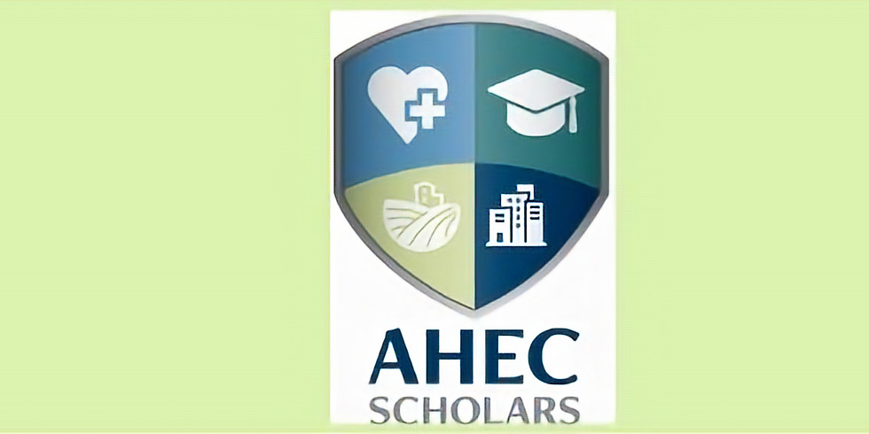 National AHEC Scholars Networking Event