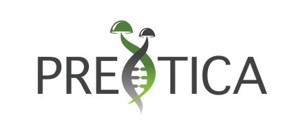preotica logo-01.png