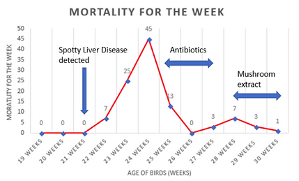 mortality for week SLD.png
