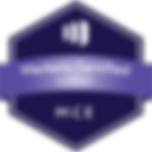 marketo-engage-certified-expert-mce.png