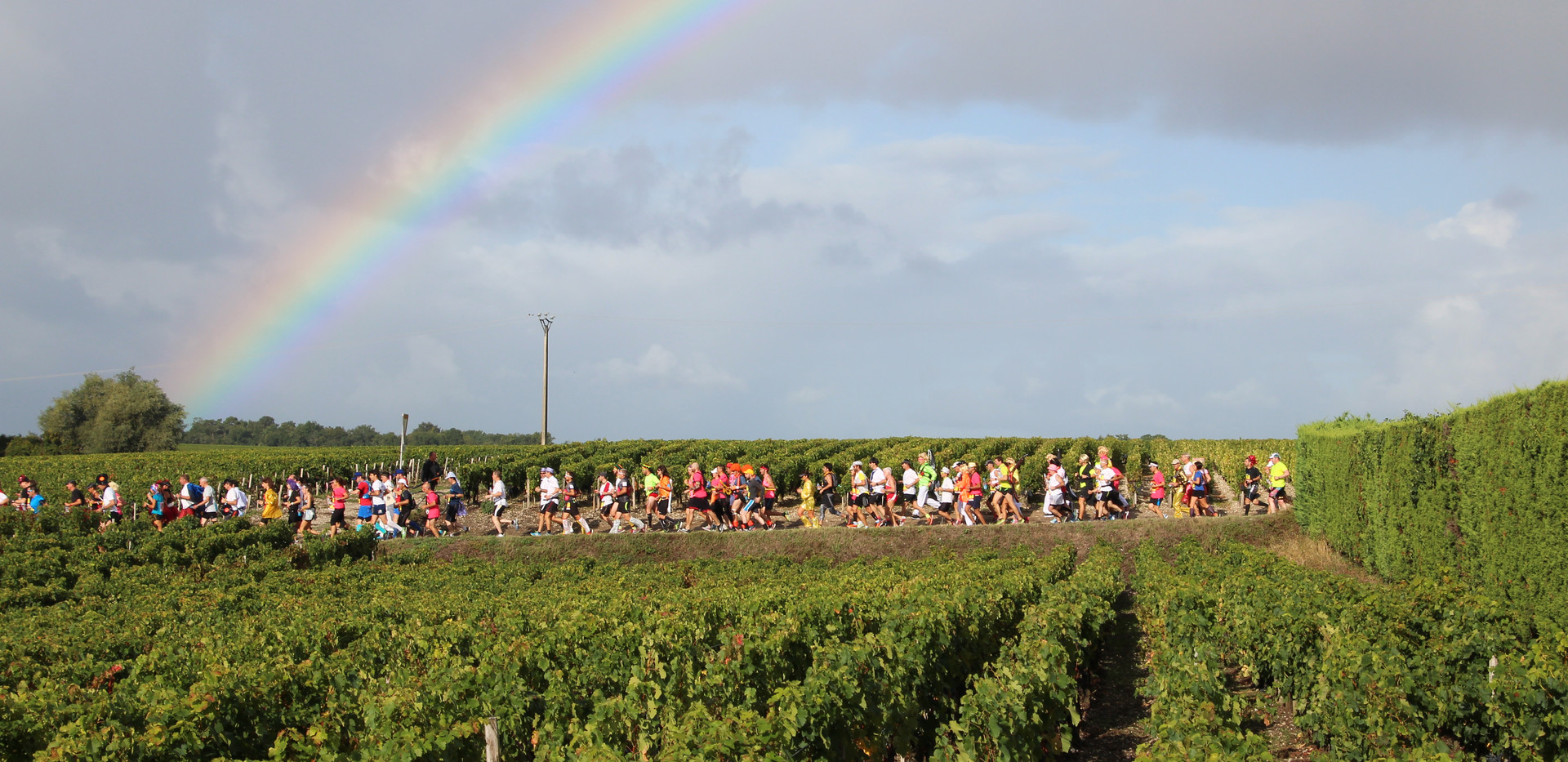 Running Beneath the Rainbow - Marathon du Medoc