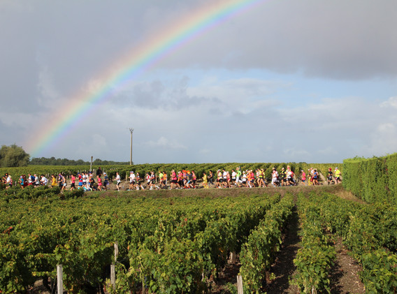 Running Beneath the Rainbow - Marathon du Medoc