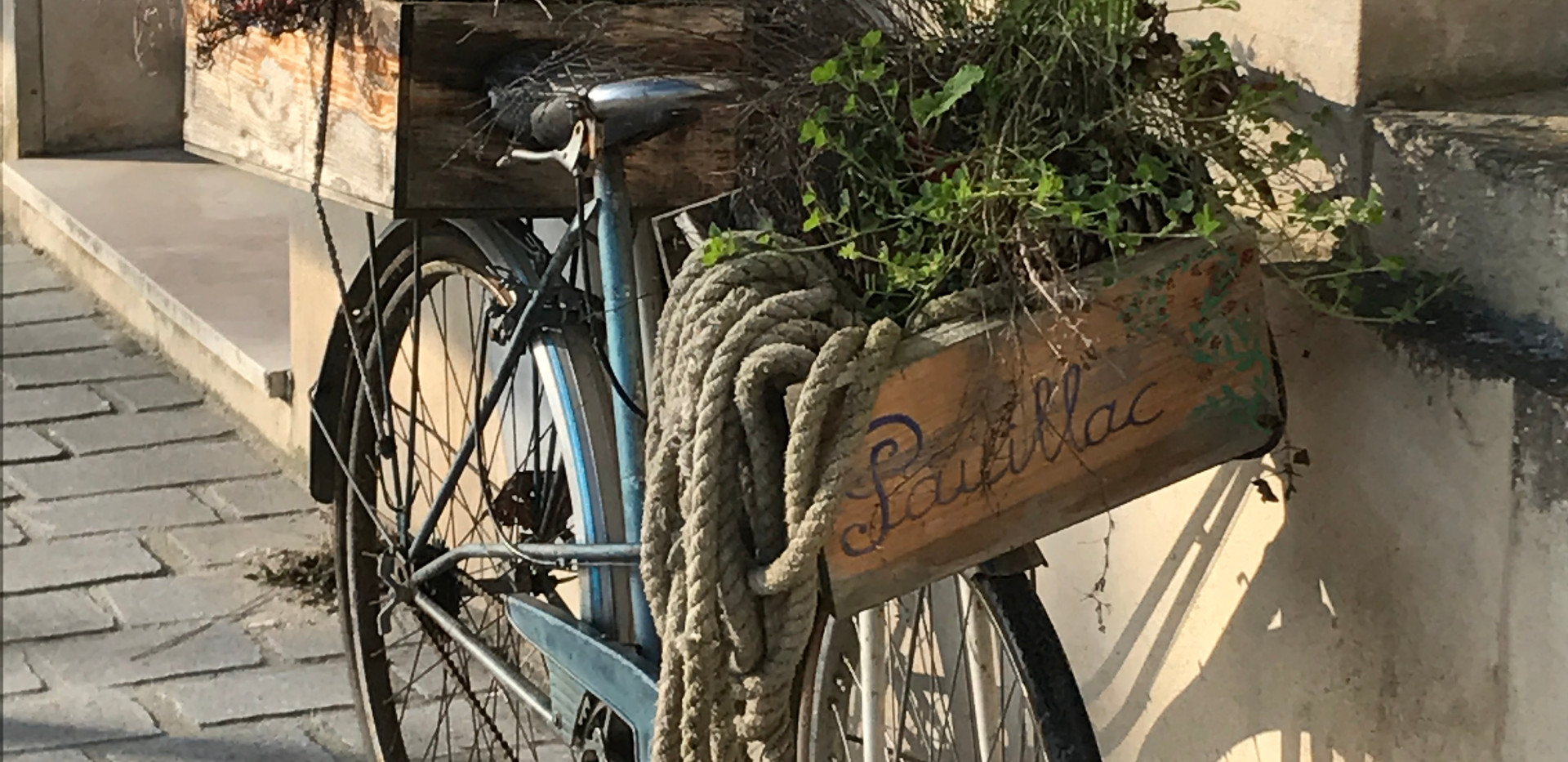 Flower Arrangement - Pauillac Bicycle