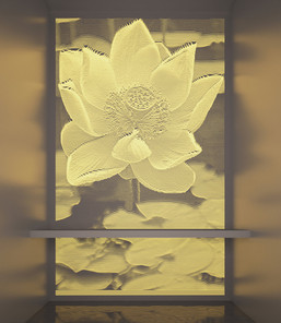 Lotus-backlight.jpg