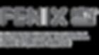 fenix-ntm-vector-logo_edited.png