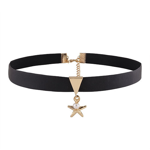 Michelle Alloy Plating Collar (Star)