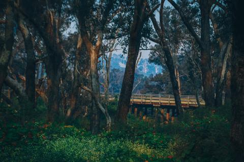 Nannup Bridge