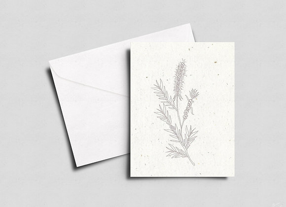 Give a Card that Grows- into a Bottle Brush