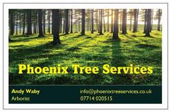 Phoenix Tree Services