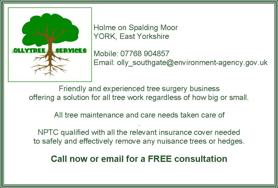 Ollytree Services
