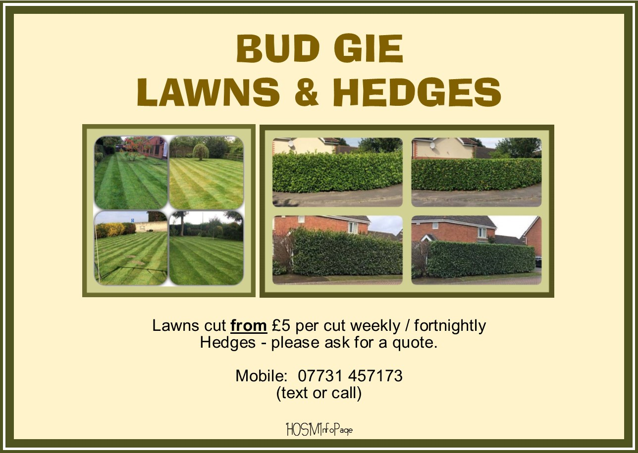 Bud Gie Lawns and Hedges