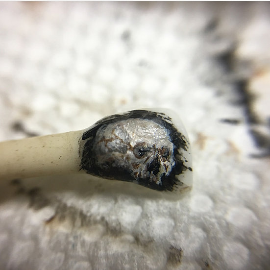 Skull on lamb tooth