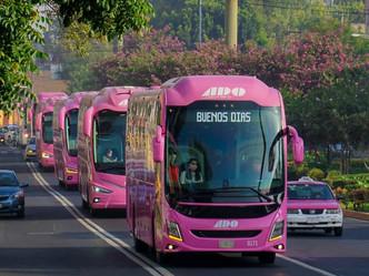 Por décimo año consecutivo Caravana Rosa ADO combate al cáncer de mama.