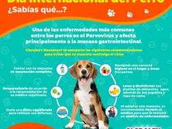 7 de cada 10 hogares en México cuentan con una mascota