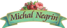 Michal Negrin.png