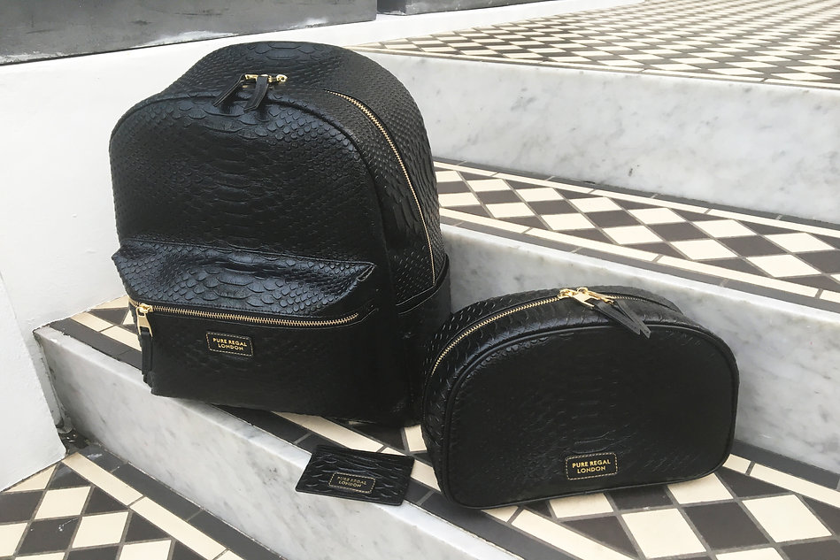 Luxe accessory python leaher backpack, card holder and toiletry bag