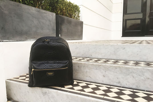 Luxe accessory duke backpack in python leaher