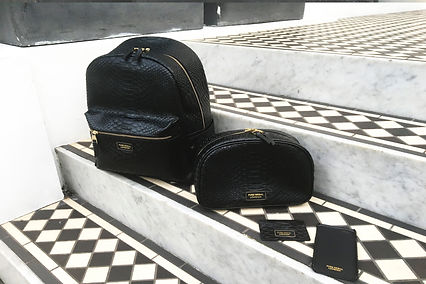 Luxe accessory python leaher backpack, card holder, iphone case, and toiletry bag