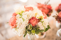 Goff Wedding (4 of 50)