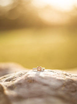 C & J Engagement (105 of 105)