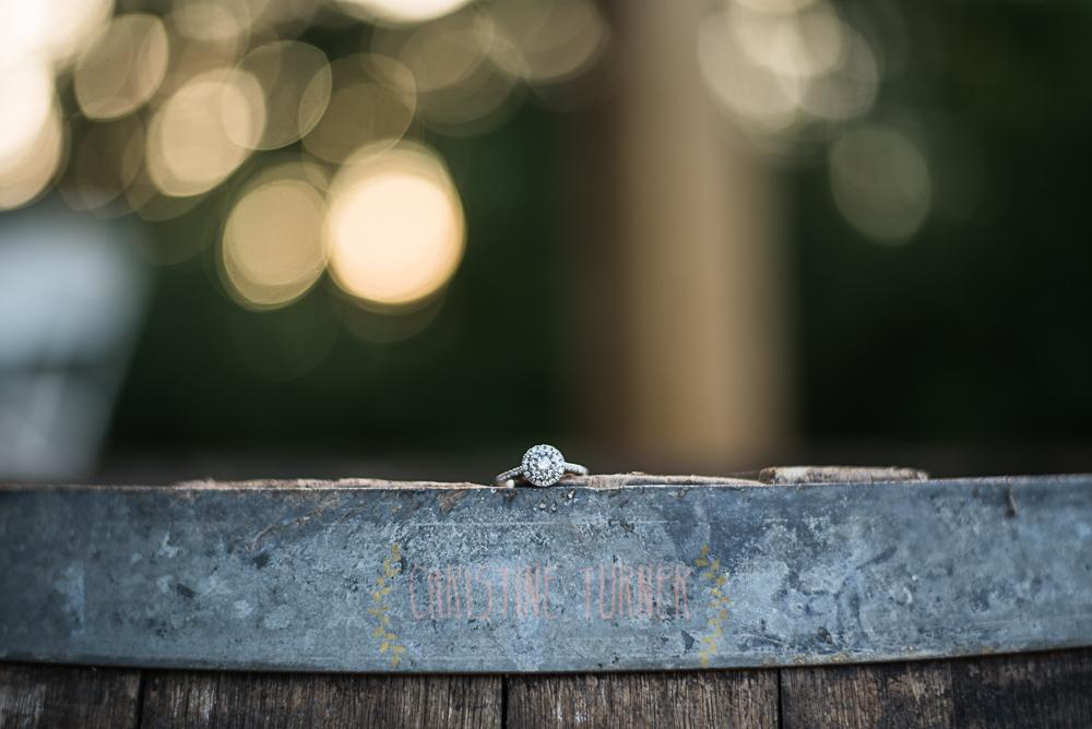 Swaney Wedding (56 of 248)