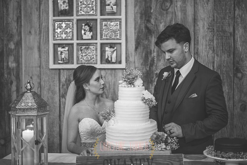 Swaney Wedding (217 of 254)