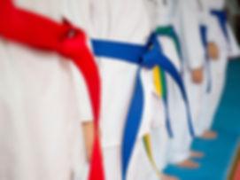 Gordelsysteem Taekwondo Saju