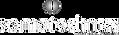 somtechnics logo.png