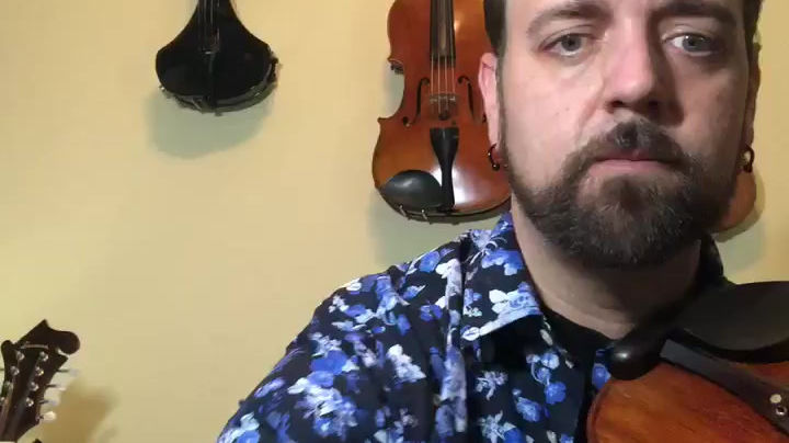 Violinist for weddings or events in Tampa, Lakeland and St.Petersburg