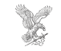 COSS Eagle(1).png