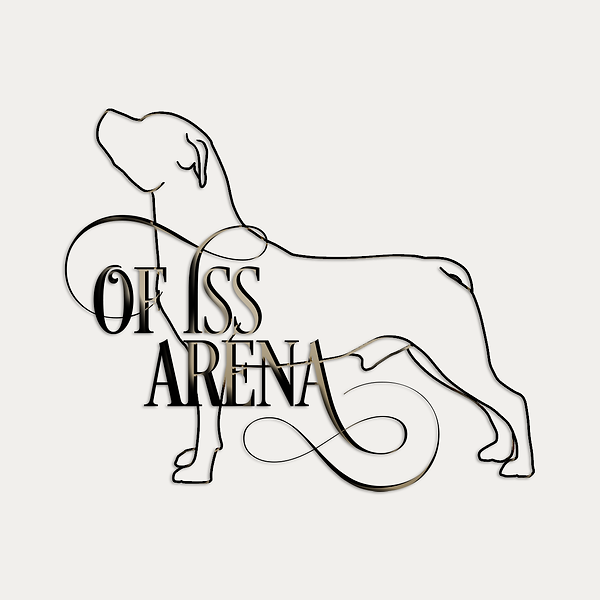 logo-Iss-Arena-4.png