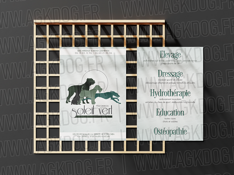 flyers-mockup-soleil-vert-3.png