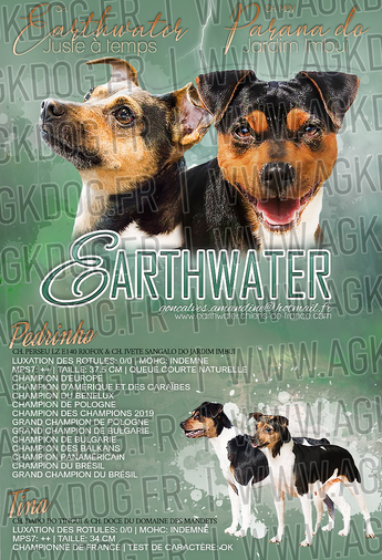 earthwater2.png