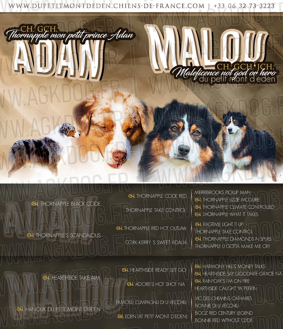 MALOU - ADAN - 2020.png