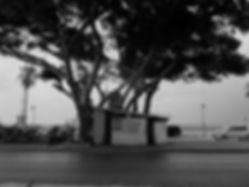 BeirutDSC00137 - Copy.jpg