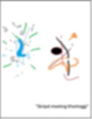 skripal-page0001.jpg