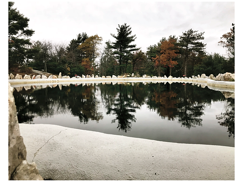 Fall Reflection I Amanda Russo Rubman