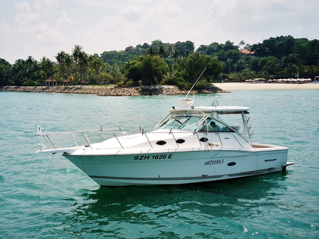 Boat Fishing 101: How To Have A Fun & Productive Day Offshore