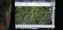 design - pre con 1_1.jpg