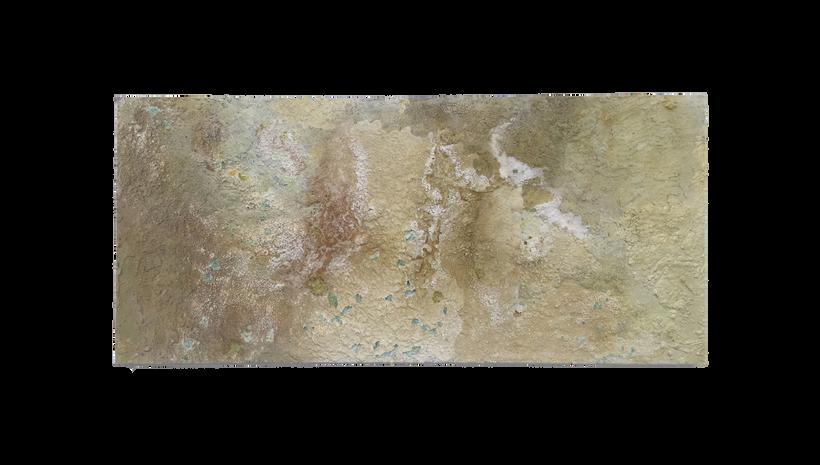 "ARID, 2017, Acrylic, salt and caulking on panel, 32"" X 68"""