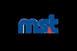 MS&T (Military Simulation & Training) magazine | Modest Tree