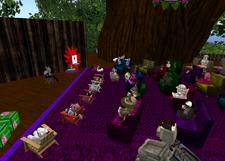 Zayn's Raglan Shire Town Hall Meeting