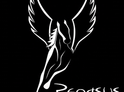 Pegasus Grand Re-Opening October 28th!