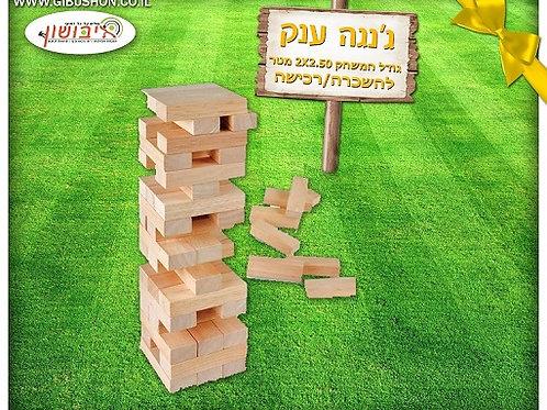משחקי רצפה לקייטנות | משחק רצפה ג'נגה ענק מעץ | משחק רצפה מצויירים | גיבושון אטרקציות והפעלות