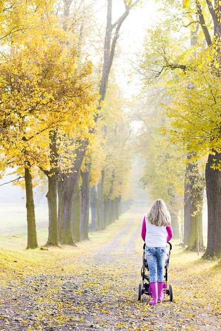 woman with a pram on walk in autumnal al