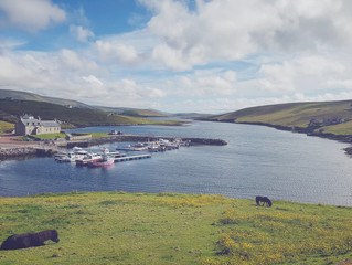 Budget accommodation available in Shetland